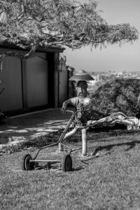 grayscale photography of robot man holding reel mower 200x300 - grayscale photography of robot man holding reel mower
